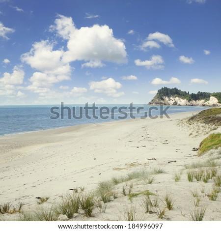 Beach and coastline, North Island, New Zealand - stock photo