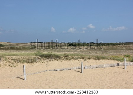 Beach and moor, heath near Etel, Morbihan, Brittany, France - stock photo