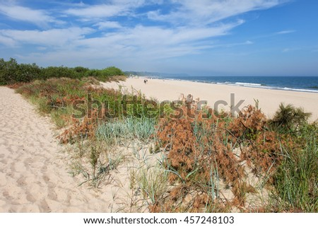 Beach and small sand dune with vegetation in resort town of Wladyslawowo in Poland at the Baltic Sea, Pomerania, Kashubia region. - stock photo