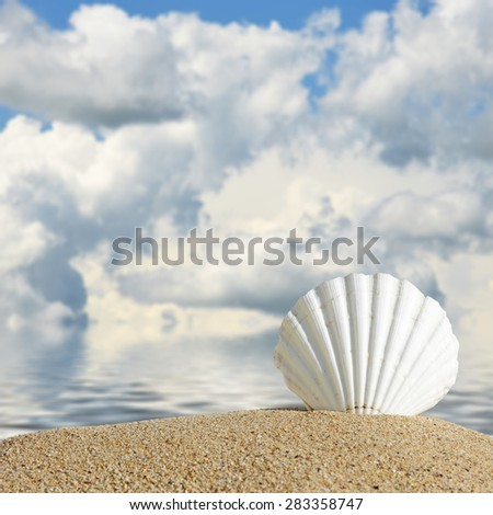 Beach background.Summer beach with sea shells and blue sky - stock photo