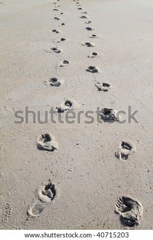 Beach footstep - stock photo