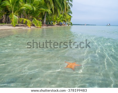 Beach in bocas del toro, Panama, Central America - stock photo
