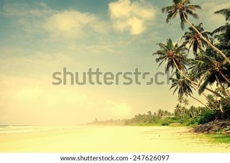 Beach on Sri Lanka - stock photo