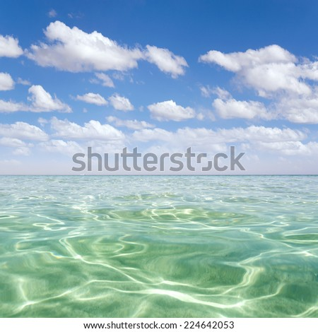 Beach on the tropical island. Clear blue water, sand and palm trees. Beautiful vacation spot, treatment and aquatics  - stock photo