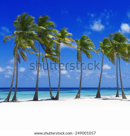 Beach on the tropical island. Clear blue water, sand and palm trees. Beautiful vacation spot. Rest, treatment and restoration of forces. - stock photo