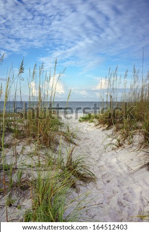 Beach path through white sand dunes and sea oats leads to calm ocean on a summer morning. - stock photo
