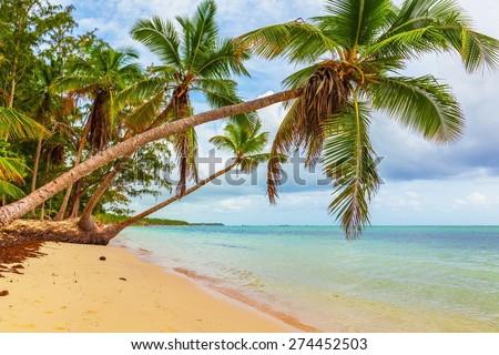 Beach, scene, sunlight. - stock photo