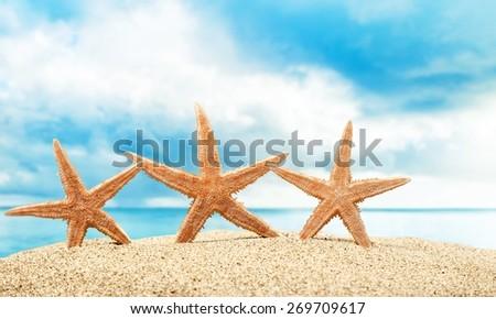 Beach. Starfish  with ocean , beach and seascape, shallow dof - stock photo