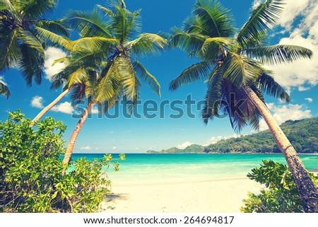 beach Takamaka, Mahe island, Seychelles - stock photo