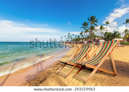 Beach, Tropical Climate, Palm Tree. - stock photo