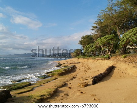 beach, tropical scene, - stock photo