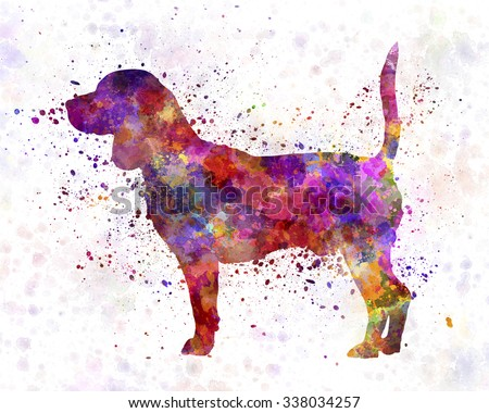 Beagle in watercolor - stock photo
