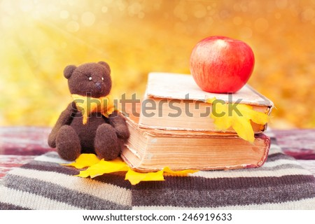 Bear, apple and books on a bench in the park - stock photo