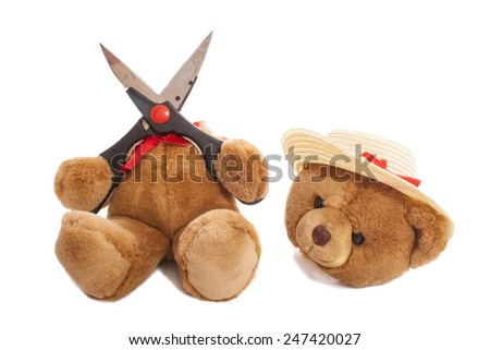 Bear cuts his head of and wears a hat - stock photo