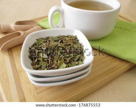 Bearberry leaves tea - stock photo