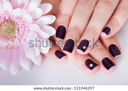 Beautful manicured nails with purple nail varnish and a tiny crystal displayed alongside a pink dahlia - stock photo