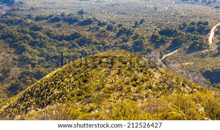 Beautiful aerial view of tree covered hill - stock photo