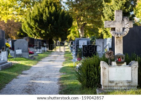 Beautiful alley at cemetery. Selective focus  - stock photo