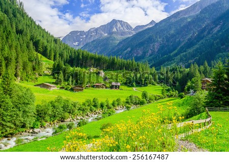 Beautiful alpine landscape with green meadows, alpine cottages and mountain peaks, Zillertal Alps, Austria - stock photo