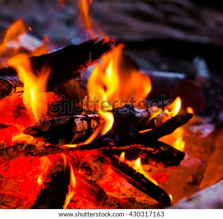 Beautiful appetizer red fire barbecue. Black background. Close up concept. Meal grill. Bbq space. Food accessory.  - stock photo