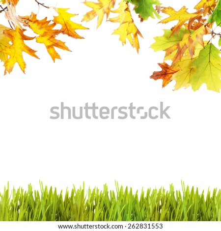 Beautiful autumn background with leaves and grass - stock photo