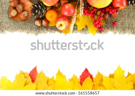 Beautiful autumn composition, isolated on white - stock photo