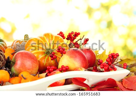 Beautiful autumn composition, on nature background - stock photo