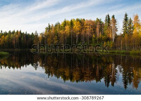 Beautiful autumn forest at the rivers coast. Scandinavia. - stock photo