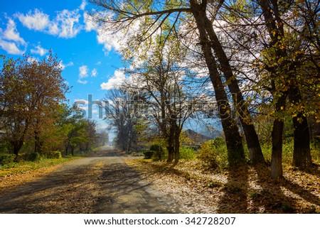 Beautiful autumn landscape, Armenia - stock photo