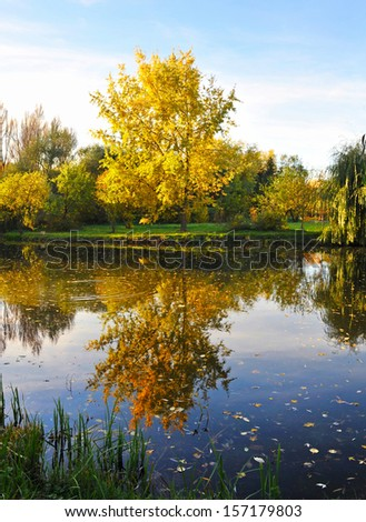 Beautiful autumn landscape with a lake - stock photo