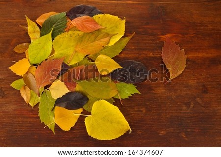 Beautiful autumn leaves on wooden background - stock photo