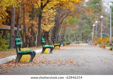 beautiful autumn trees in city park - stock photo