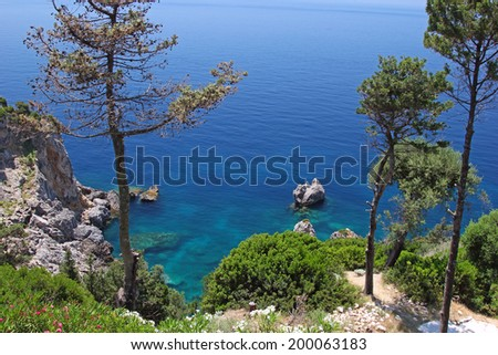 Beautiful azure sea with transparent turquoise water. Pines on the foreground. Corfu, Greece - stock photo