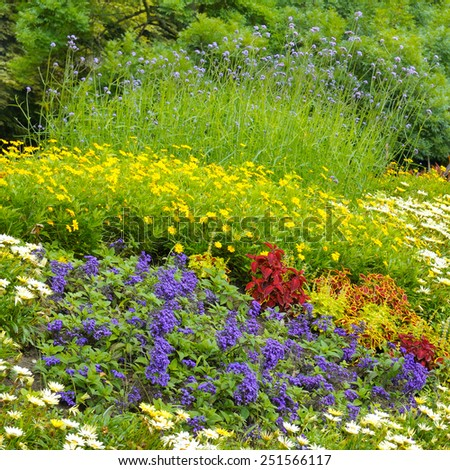beautiful background of bright garden flowers - stock photo