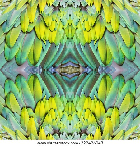 Beautiful background seamless pattern made from Common Emerald Dove feathers - stock photo