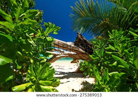 Beautiful beach at Seychelles, La Digue - stock photo