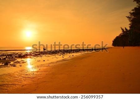 Beautiful Beach at Sunrise - stock photo