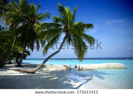 Beautiful beach in the Maldives - stock photo