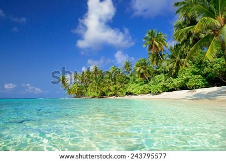 beautiful beach on the maldives - stock photo