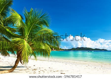 Beautiful beach with palm tree at Seychelles, Praslin, Cote d'Or - stock photo