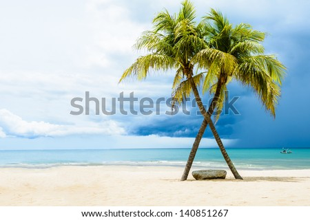Beautiful beach with palms, Thailand - stock photo