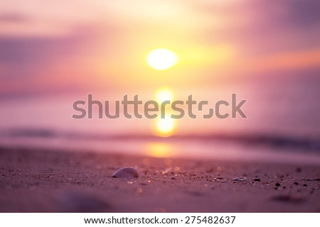 Beautiful beach with sunrise background. Focus on sea shell. - stock photo