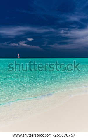Beautiful beach with wooden jetty and single small tree in Maldives - stock photo