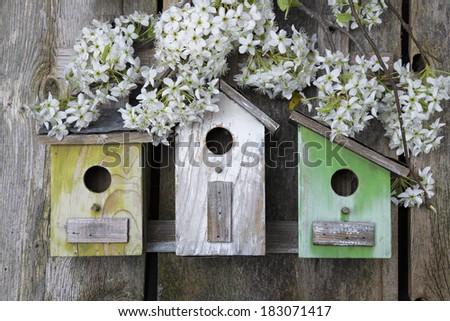 Beautiful birdhouses with Bradford Pear blossoms on old wooden fence - stock photo