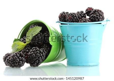beautiful blackberries with leaves in buckets isolated on white - stock photo