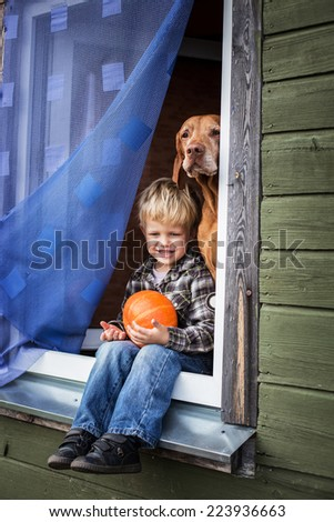 Beautiful blond boy sitting on window sill with hungarian vizsla and hold pumpkin. Outdoor portrait  - stock photo