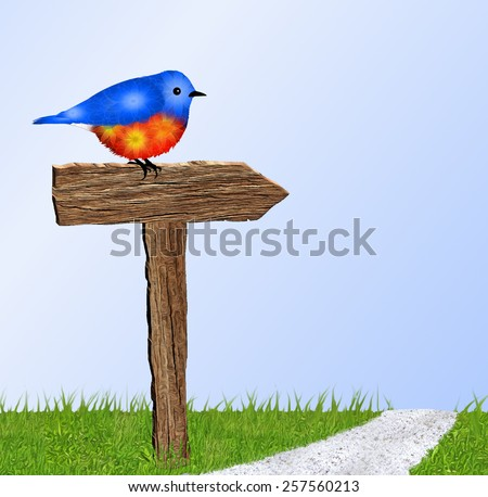 Beautiful blue and orange bird (Bluebird) sitting on rustic brown wooden sign beside path. Green grass in foreground. Blue and white sky in background.   - stock photo