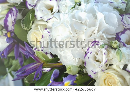 Beautiful blue iris flower, lush leaves, white hydrangea, delicate cream roses with bright background. Summer concept. Copy space, text here - stock photo