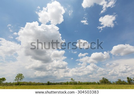 Beautiful blue sky and white clouds at green paddy field - stock photo