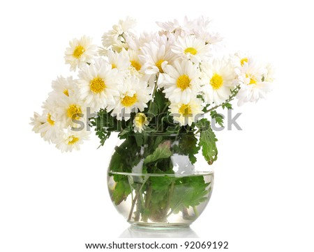 beautiful bouquet of daisies in vase isolated on white - stock photo